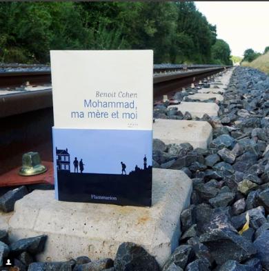 Mohammadmamereetmoi