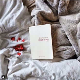 Chien-loup_sergejoncour